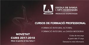 CURSOS DE FORMACIÓ PROFESSIONAL