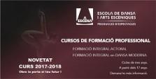 CURSOS DE FORMACIÓN PROFESIONAL